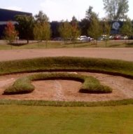 Flower Bed at the Indianapolis Colts Training Facility
